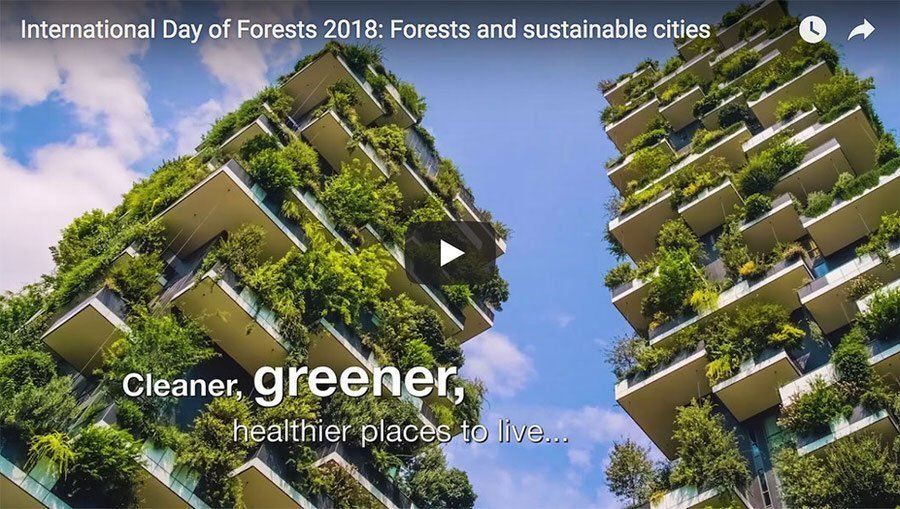 International Day of Forests 2018 – 21st March